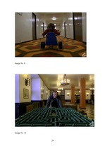 "Research Papers 'Symbols and Signs in Stanley Kubrick's Film ""The Shining""', 28."