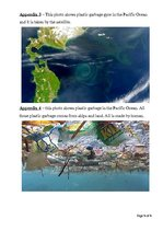 Research Papers 'The Pacific Garbage Patch', 8.
