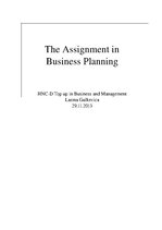Research Papers 'The Assignment in Business Planning', 1.