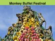 Presentations 'Monkey Buffet Festival', 3.