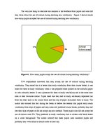 Research Papers 'The Use of Colours in English Lessons Teaching Vocabulary to Secondary School Pu', 27.